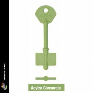 modeo Acytra Consorcio
